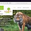 wildlife-web-screen