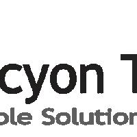 Halcyon Technologies - Custom Software Development Company