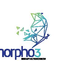 Morpho3 Logo