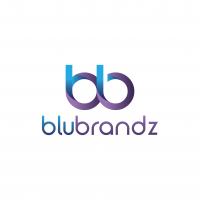 BluBrandz Logo-02