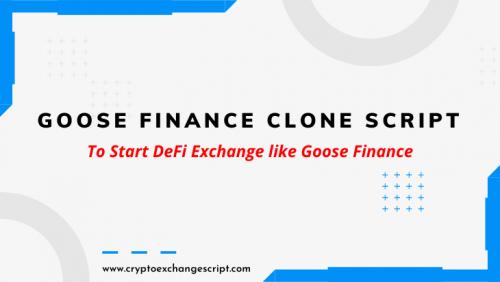 goose finance clone script development